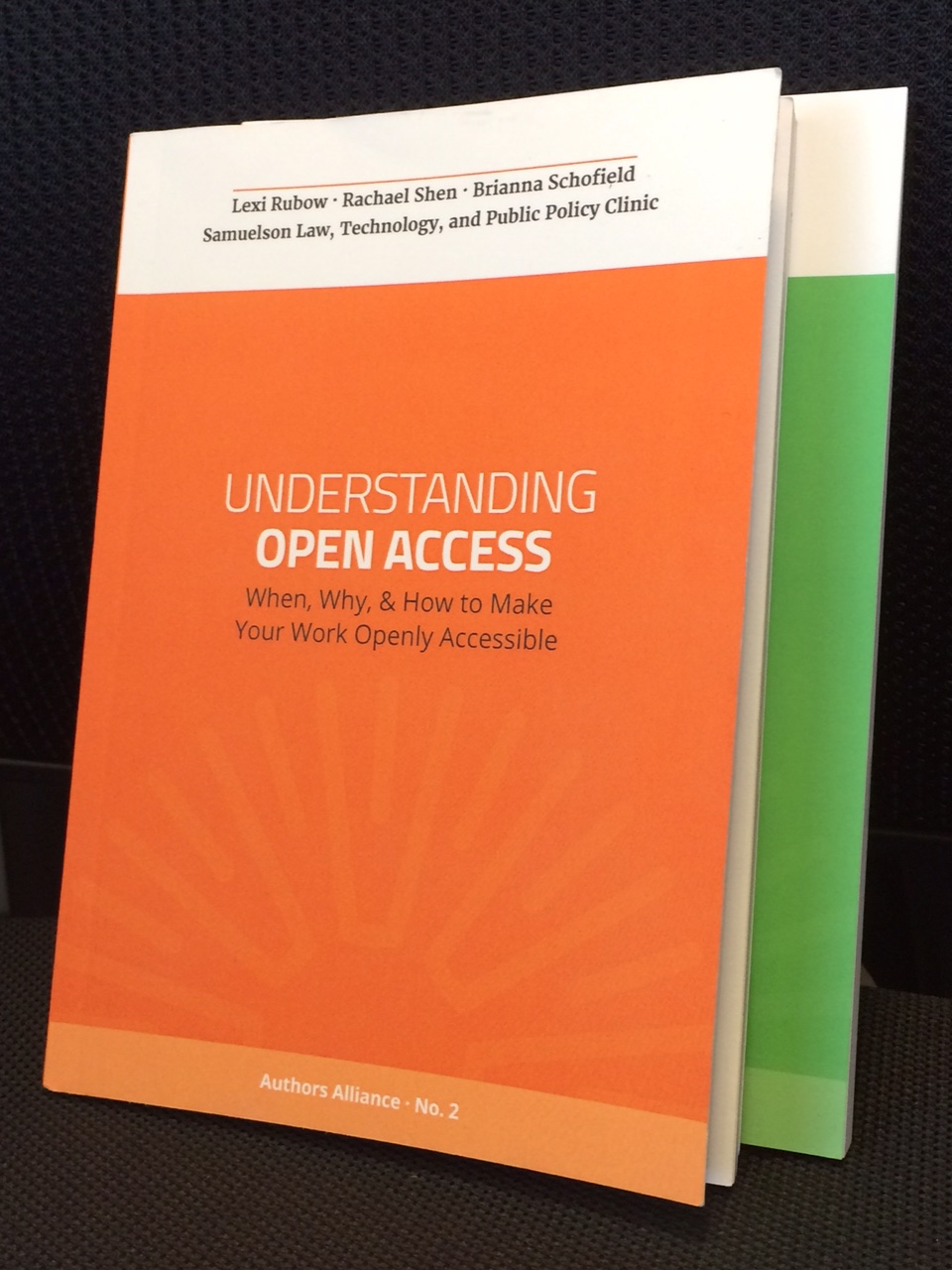 Understanding Open Access: Now in Print